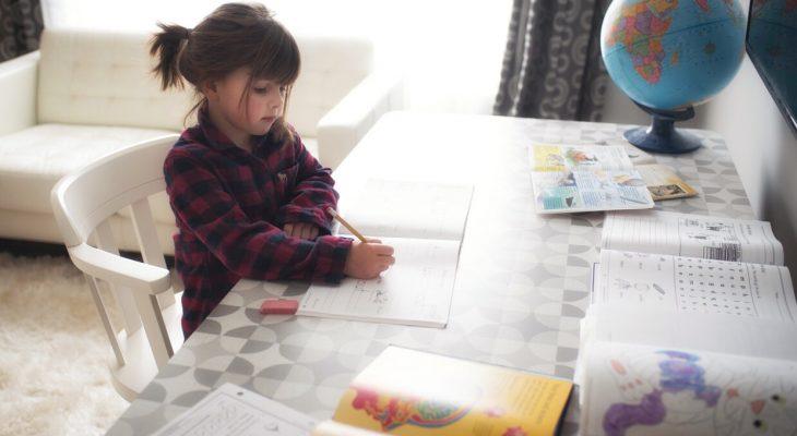 Homeschooling – First Year Recap
